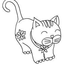 Dibujo para colorear gatito bonito - Dibujos para Colorear y Pintar - Dibujos para colorear ANIMALES - Dibujos GATOS para colorear - Dibujos para colorear GATITOS