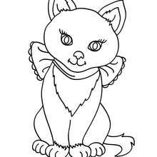 Dibujo para colorear cachorro de gato Siames - Dibujos para Colorear y Pintar - Dibujos para colorear ANIMALES - Dibujos GATOS para colorear - Dibujos para pintar GATOS SIAMESES