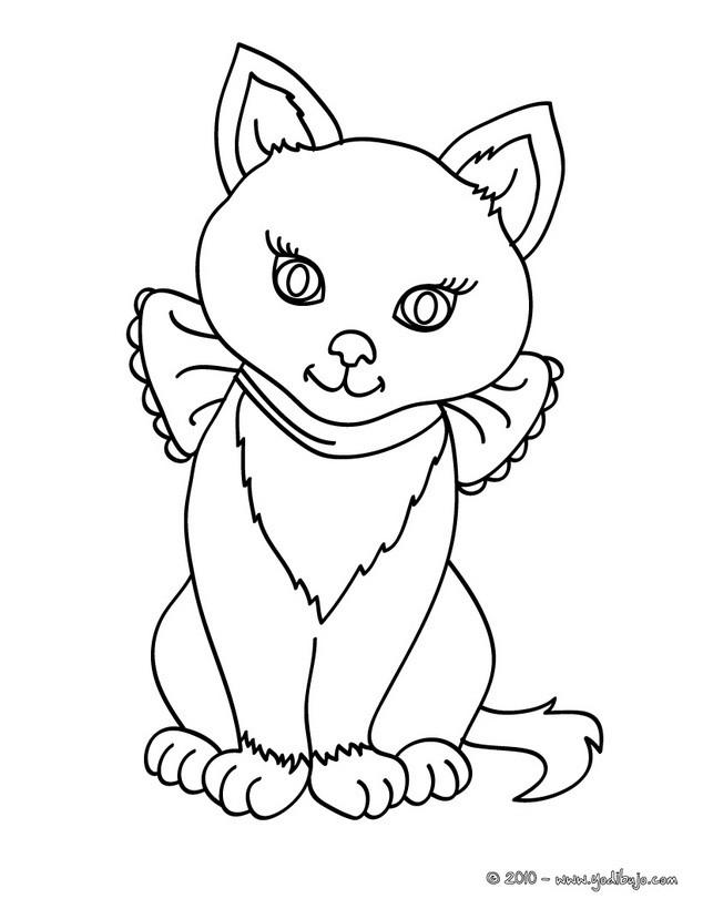 para colorear cachorro de gato Siames - Dibujos para pintar GATOS ...