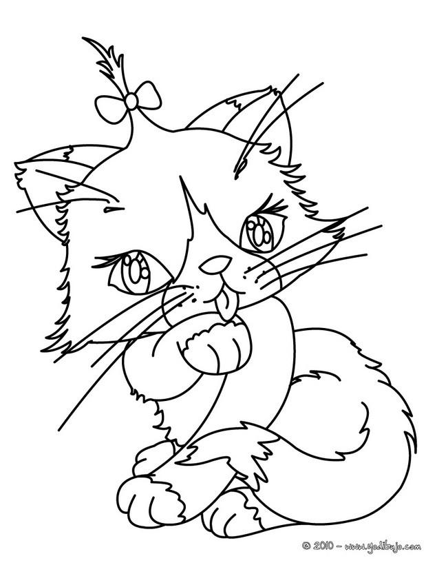 Dibujos para colorear gata con su cria - es.hellokids.com