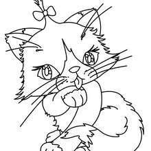 Dibujo para colorear : cachorro gato angora