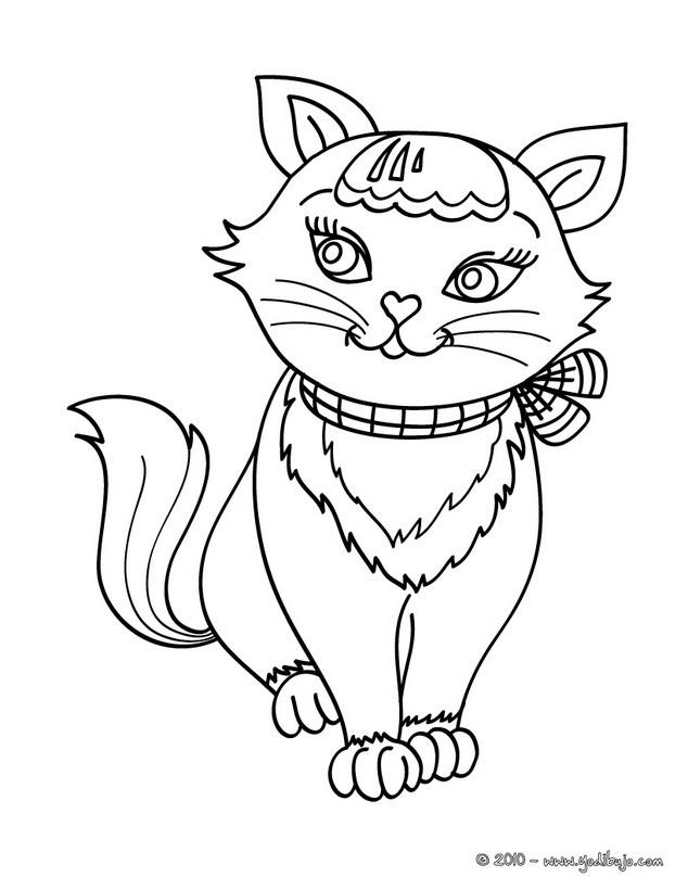 Dibujos para colorear cachorro gato angora turco - es.hellokids.com