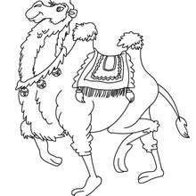 Dibujo para colorear CAMELLO - Dibujos para Colorear y Pintar - Dibujos para colorear ANIMALES - Dibujos ANIMALES SALVAJES para colorear - Dibujos para colorear e imprimir ANIMALES SALVAJES - Colorear CAMELLO