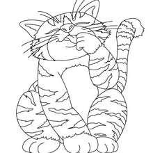 Dibujo para colorear : gato callejero