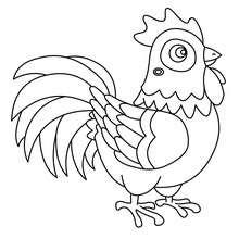 Dibujo para pintar gallo - Dibujos para Colorear y Pintar - Dibujos para colorear ANIMALES - Dibujos ANIMALES DE GRANJA para colorear - Colorear GALLO