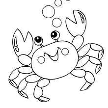 Dibujo de cangrejo para pintar - Dibujos para Colorear y Pintar - Dibujos para colorear ANIMALES - Dibujos ANIMALES MARINOS para colorear - Colorear CANGREJO