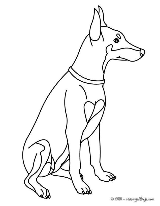 Dibujos PERROS para colorear - 40 dibujos de animales para colorear ...
