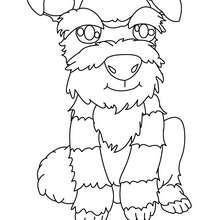 Dibujo para colorear : Cachorro Foxterrier con Pelo duro