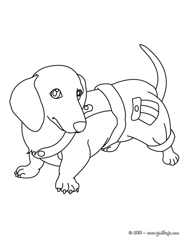 weenie dogs coloring pages - photo#8