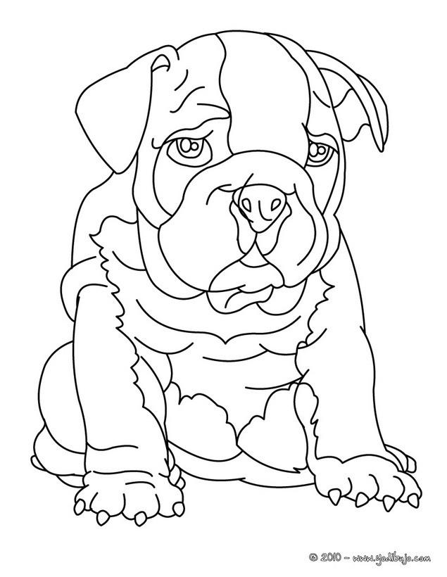 Dibujos Perros Para Colorear 40 Dibujos De Animales Para