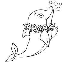 Dibujo para colorear un delfin Tahiti - Dibujos para Colorear y Pintar - Dibujos para colorear ANIMALES - Colorear DELFINES