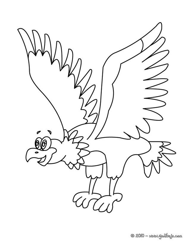 Dibujo para colorear : águila