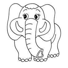 Dibujo para colorear : cachorro elefante