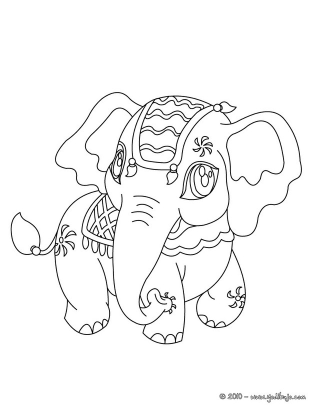 Dibujo para colorear : ELEFANTE DE INDIA