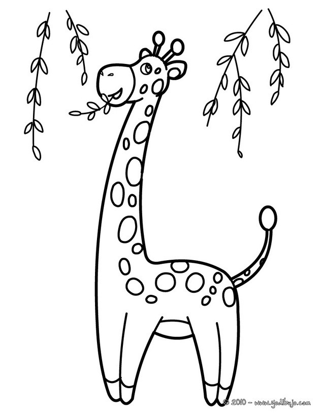Dibujos para colorear jirafa  eshellokidscom