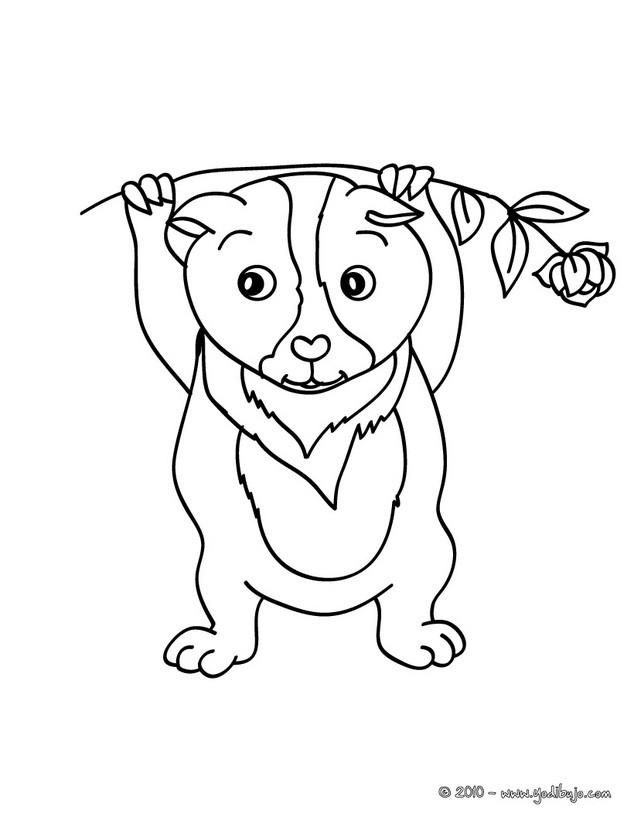 Dibujos para colorear cobaya teddy - es.hellokids.com