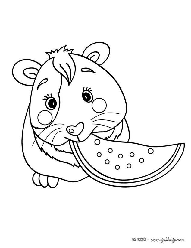 Dibujos para colorear raton - es.hellokids.com
