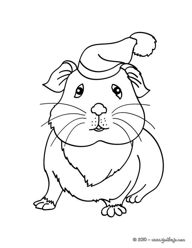 Dibujos para colorear hamster chino - es.hellokids.com