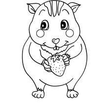 Dibujo para pintar RATON - Dibujos para Colorear y Pintar - Dibujos para colorear ANIMALES - Dibujos MASCOTAS para colorear - Dibujos RATON para colorear