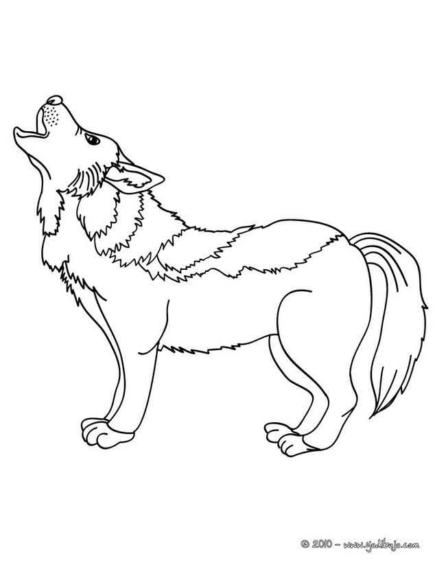 Dibujos para colorear lobo - es.hellokids.com