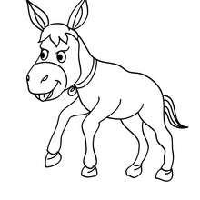 Dibujo para pintar burro - Dibujos para Colorear y Pintar - Dibujos para colorear ANIMALES - Dibujos ANIMALES DE GRANJA para colorear - Colorear BURRO