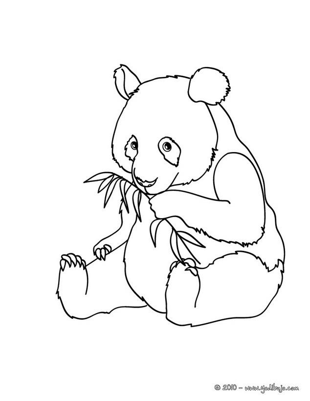 Dibujos para colorear oso panda em el bosque - es.hellokids.com