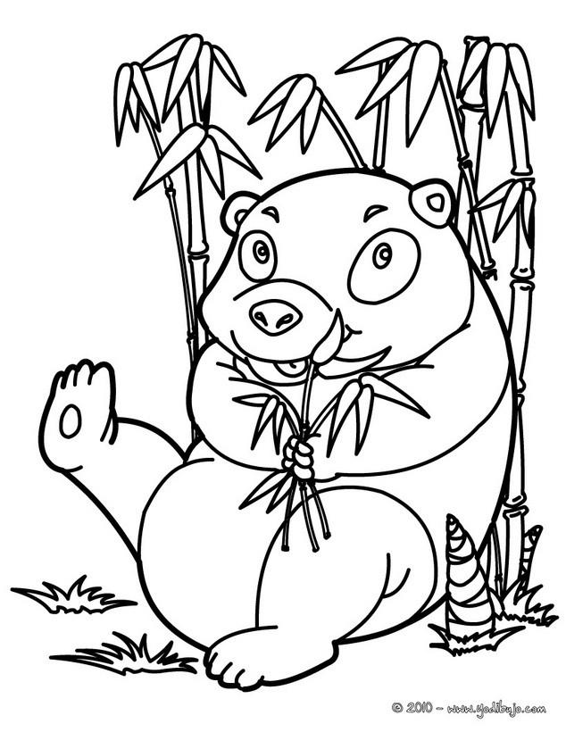 Dibujos para colorear oso panda come bambú - es.hellokids.com