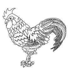 Dibujo para colorear GALLO - Dibujos para Colorear y Pintar - Dibujos para colorear ANIMALES - Dibujos ANIMALES DE GRANJA para colorear - Colorear GALLO