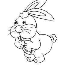 Dibujo para pintar gazapo con zanahoria - Dibujos para Colorear y Pintar - Dibujos para colorear ANIMALES - Dibujos ANIMALES DE GRANJA para colorear - Colorear CONEJOS - Colorear GAZAPOS