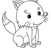 Dibujo para pintar CACHORRO ZORRO - Dibujos para Colorear y Pintar - Dibujos para colorear ANIMALES - Dibujos ANIMALES SALVAJES para colorear - Dibujos ANIMALES DE LA SELVA para colorear - Colorear ZORRO