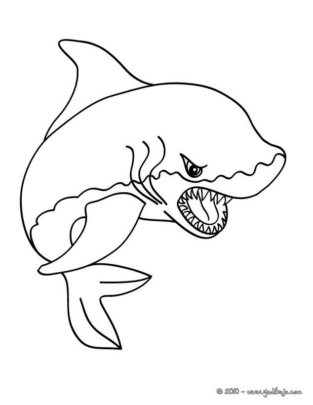 Dibujos ANIMALES MARINOS para colorear - 59 dibujos de animales para ...
