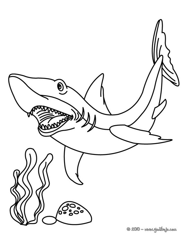 Dibujos para colorear tiburon toro - es.hellokids.com