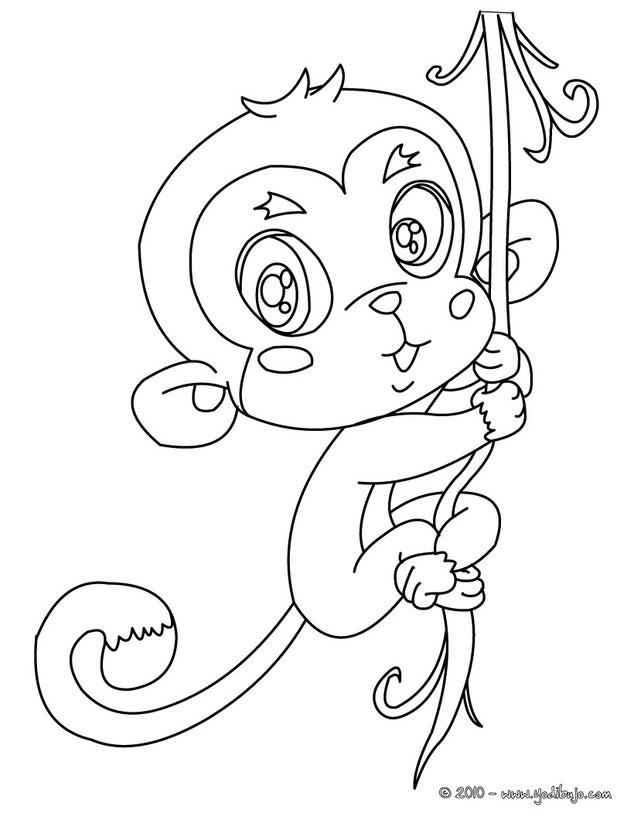 Dibujos ANIMALES DE LA JUNGLA para colorear, MONO para imprimir