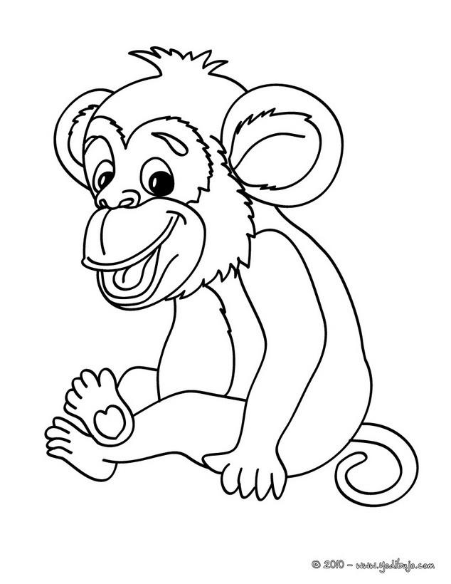 Dibujos para colorear mono chimpancé - es.hellokids.com