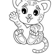Dibujo para colorear CACHORRO TIGRE - Dibujos para Colorear y Pintar - Dibujos para colorear ANIMALES - Dibujos ANIMALES SALVAJES para colorear - Dibujos para colorear e imprimir ANIMALES SALVAJES - Colorear TIGRE