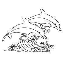 Dibujo para colorear : DELFINES SALTANDO