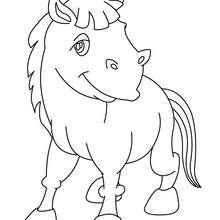 Dibujo para colorear CRIA DE BURRO - Dibujos para Colorear y Pintar - Dibujos para colorear ANIMALES - Dibujos ANIMALES DE GRANJA para colorear - Colorear BURRO