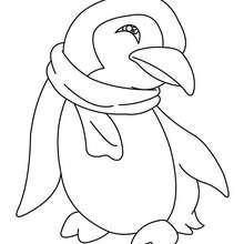 Dibujo PINGUINO CHISTOSO - Dibujos para Colorear y Pintar - Dibujos para colorear ANIMALES - Dibujos ANIMALES SALVAJES para colorear - Dibujos ANIMALES DE LA BANQUISA para colorear - Colorear PINGUINO