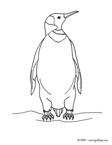 Dibujo para colorear : un PINGUINO