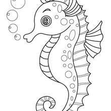 Dibujo HIPOCAMPO CHISTOSO - Dibujos para Colorear y Pintar - Dibujos para colorear ANIMALES - Dibujos ANIMALES MARINOS para colorear - Colorear HIPOCAMPO