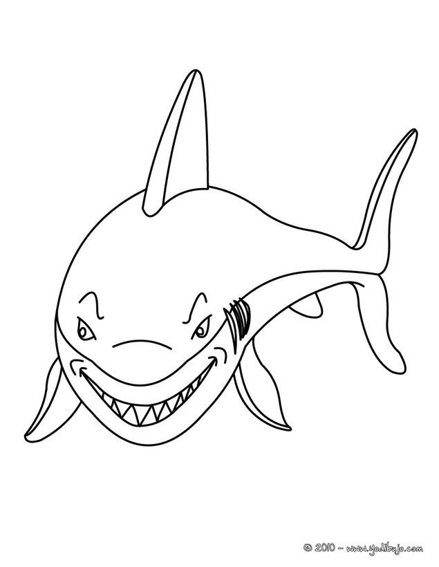 Dibujos para colorear tiburon martillo - es.hellokids.com