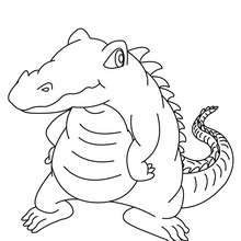 Dibujo de COCODRILO - Dibujos para Colorear y Pintar - Dibujos para colorear ANIMALES - Dibujos REPTILES para colorear - Colorear dibujos de COCODRILO