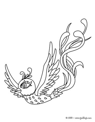 Dibujos para colorear un perico - es.hellokids.com