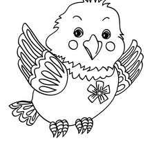 Dibujo CRIA DE PAJARO - Dibujos para Colorear y Pintar - Dibujos para colorear ANIMALES - Dibujos PAJAROS para colorear - Dibujos para pintar PAJAROS