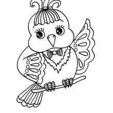 Dibujo CANARIO - Dibujos para Colorear y Pintar - Dibujos para colorear ANIMALES - Dibujos AVES para colorear - Colorear CANARIOS
