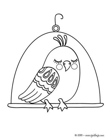 Pájaro : Dibujos para Colorear, Juegos Gratuitos, Dibujo para Niños ...
