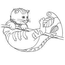 Dibujo para colorear : gato callejero jugando