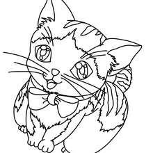 Dibujo de GATITO HERMOSO - Dibujos para Colorear y Pintar - Dibujos para colorear ANIMALES - Dibujos GATOS para colorear - Dibujos para colorear GATITOS