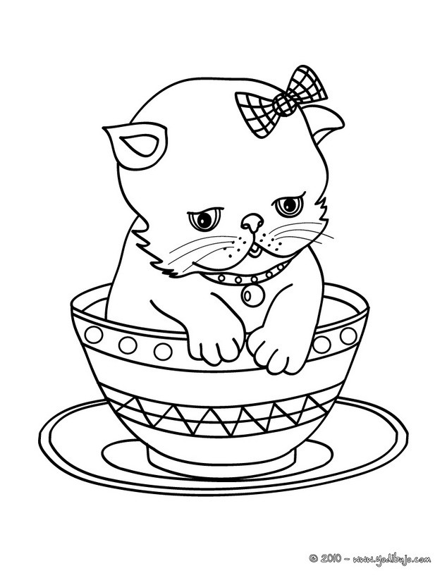 Dibujos para colorear gato persa en una tasa - es.hellokids.com