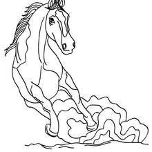 Dibujo CABALLO MUSTANG - Dibujos para Colorear y Pintar - Dibujos para colorear ANIMALES - Colorear CABALLOS - Colorear CABALLOS MUSTANG